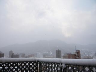 2008_1207yuki0006.jpg
