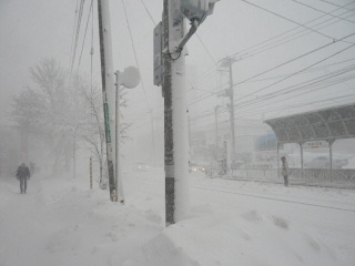 2008_1226pomsyu0026b.jpg