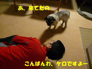 2009_0221sakusaku0001b.jpg