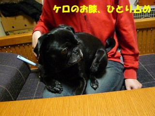 2009_0221sakusaku0006b.jpg