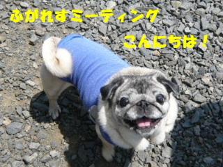 2009_0531fhm0001b.jpg