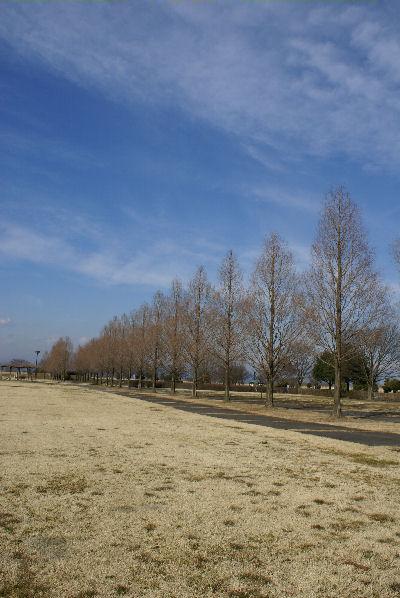 20090127watarase3