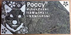 ペットの墓地区画プレート