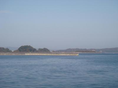 食祭市場から撮った海