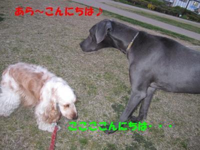 IMG_0405ーp