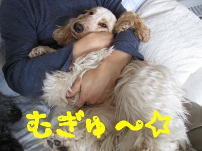 IMG_0602ーp