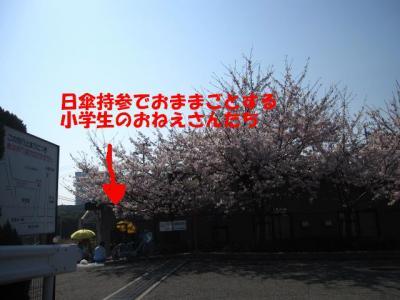 IMG_0391-p.jpg