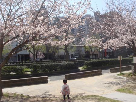 itsuki and sakura