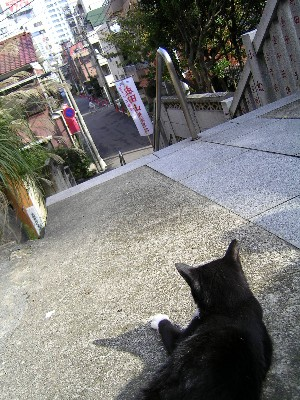 守り猫.jpg