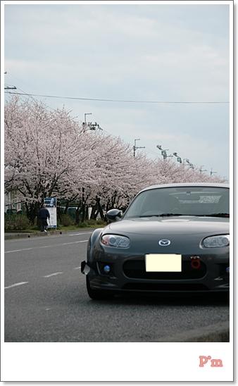 2010410d.jpg