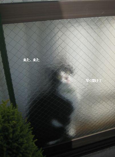 0IMG_4040.jpg