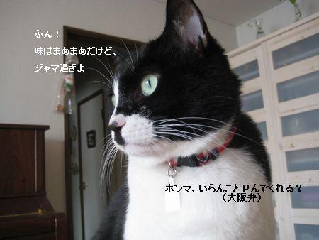 6117IMG_5416.jpg