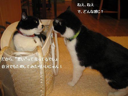 701IMG_5484.jpg
