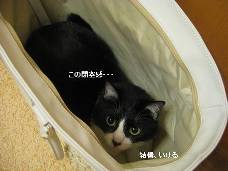 701IMG_5493.jpg