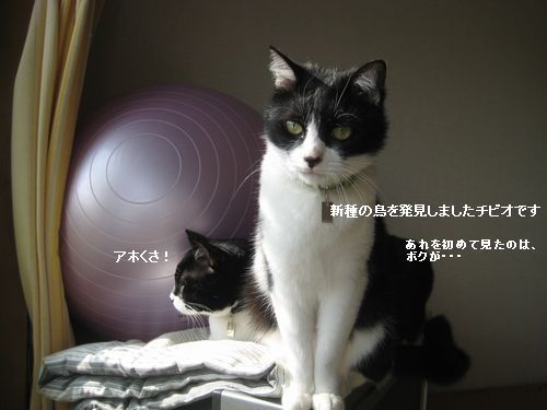 7IMG_4369.jpg