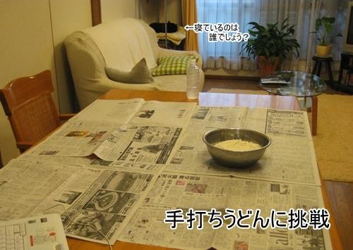 9271IMG_7288-crop.jpg