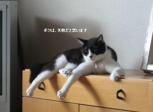 953IMG_6759.jpg