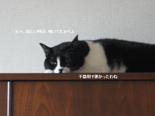 9561IMG_6757.jpg