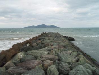 2009-02-03-1.jpg