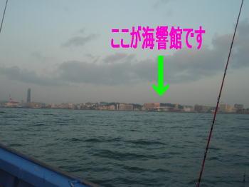2009-02-19-01.jpg