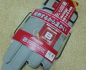 NEC_0008_20090127213446.jpg
