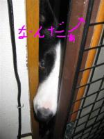 IMG_1344.jpg