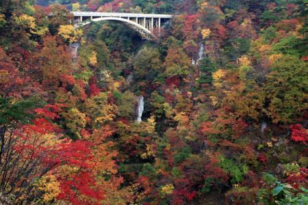 鳴子峡の秋