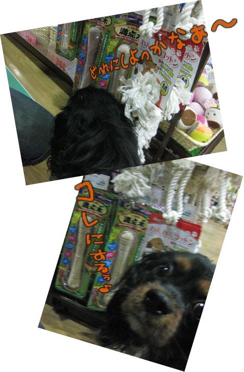 0401c_20120402012925.jpg