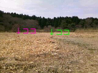 20090427001259.jpg