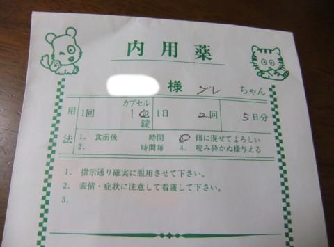 2011.0217とり 007