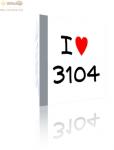 cd-3104.png