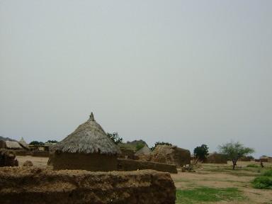 写真: プロジェクト活動を実施しているセナール州内の村の様子。
