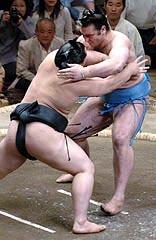 sumo-elbow_edited.jpg