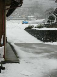 3月9日雪3