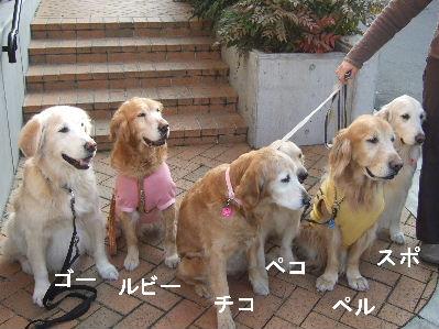 2007_0208wanwann2.jpg