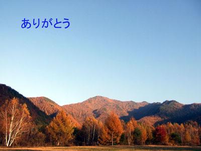 2007_1221bl12.jpg