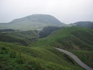 2007501.jpg