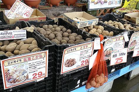 じゃが芋の種売り場♪