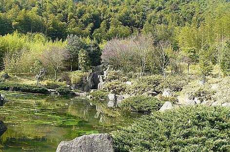 日本庭園♪
