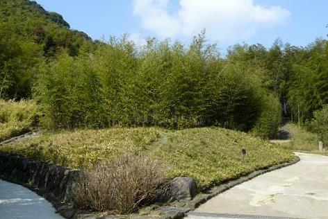 竹笹の道♪