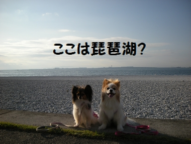 039_20091001214039.jpg