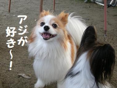 052_20091113133353.jpg