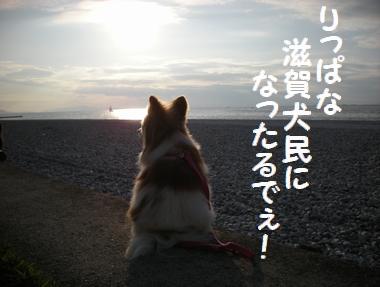 068_20091001235715.jpg