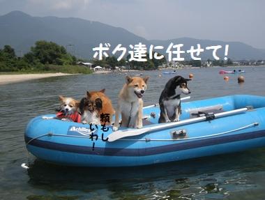 119_20090820142800.jpg