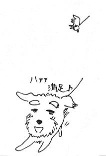 P1100061.jpg