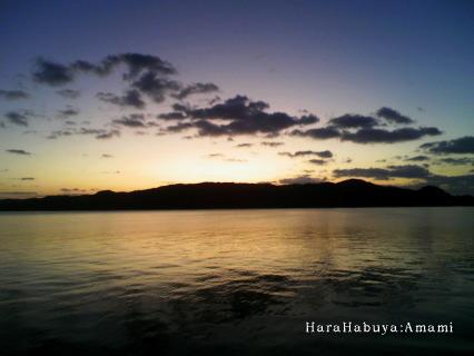 龍郷の日の出