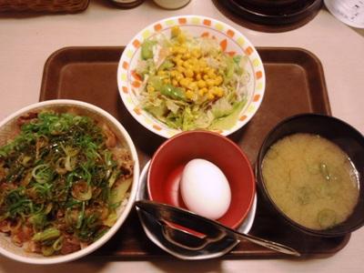 すき家ねぎ玉牛丼サラダセット