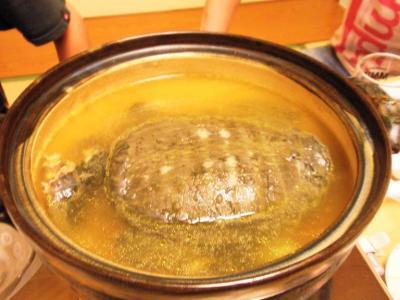 おがわスッポン鍋