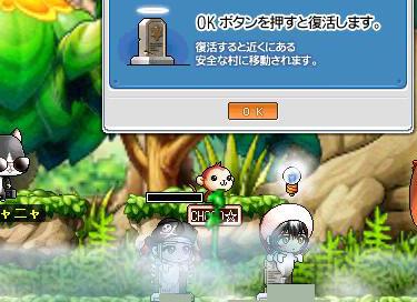 Maple90214-1.jpg
