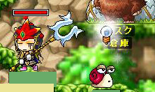 Maple90507-1.jpg